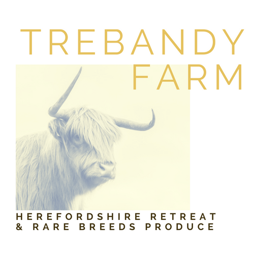 Trebandy-Farm-Herefordshire-Logo-Rural-Retreat-Farmstay-Livestock-Rarebreeds-WildMeat