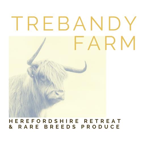 Trebandy-Farm-Herefordshire-Logo-Rural-Retreat-Farmstay-Livestock-Rarebreeds-WildMeat